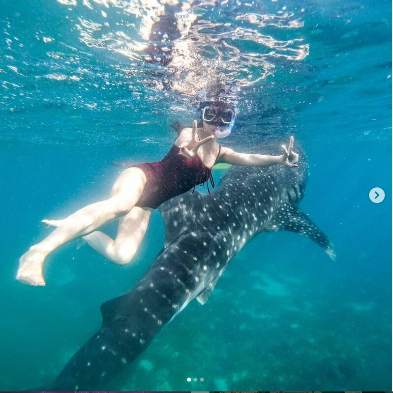 Ethical Swimming with Whale Sharks in Leyte, Philippines