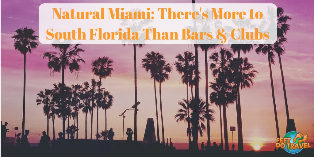 Natural Miami, There's more to South Florida than Bars & Clubs, Party City, Oleta River State Park, Biscayne Bay, Everglades National Park, Wynwood Walls, Feet Do Travel
