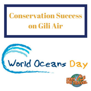 World Oceans Day Conservation Success on Gili Air Indonesia Feet Do Travel