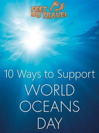 World Ocean's Day on 8 June gives us a chance to celebrate, honour, help protect and conserve the world's Oceans. If we all play a small part, it can make a huge difference. Here are 10 easy ways you can support our world's oceans. #WorldOceansDay #OceansDay #CleanSeas #Ocean #Oceans #OceanHeroes #OceanConservation