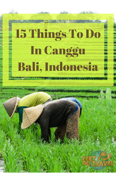 If you're visiting Bali, Indonesia then Canggu needs to be on your list. An up-and-coming bohemian hangout for digital nomads, surfers and yogis, it offers a more chilled and relax vibe than its Kuta and Seminyak neighbours. Let Feet Do Travel show you 15 of the best things to do in Canggu. #canggu #bali #baliguide #beachesinseasia #streetart #indonesia #southeastasia #Indonesiatravel #WonderfulIndonesia #exploreindonesia #incredibleindonesia #visitindonesia #travel #traveltips #travelguides