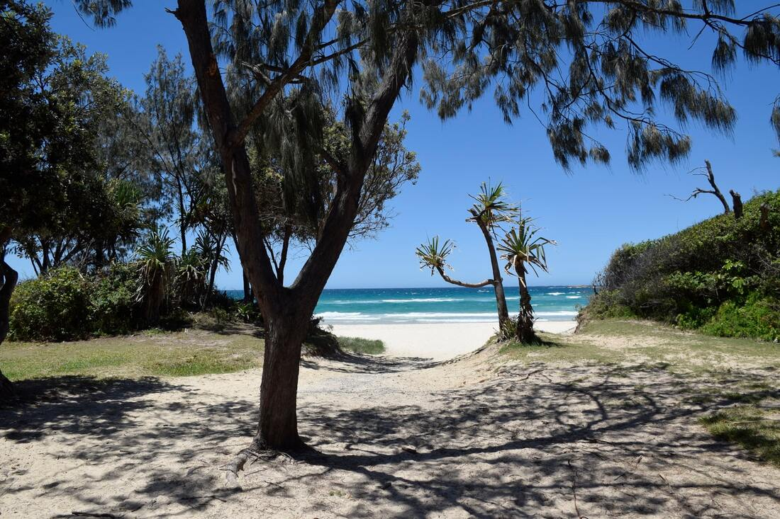 5 best family day trips from Brisbane, Australia, Moreton Island, Tangalooma Wrecks, Stradbroke Island, Mt Coot-tha, Mount Coot Tha sunset, South Bank, Currumbin Wildlife Sanctuary, Feet Do Travel