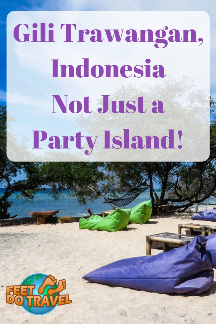 Gili Trawangan (Gili T) Indonesia is known as the party island. Quieter than nearby Bali, this tropical paradise near Lombok has white sand beaches, turquoise waters and you can learn to scuba dive! Feet Do Travel show you there's more to Gili Trawangan, it's not just a party island. #GiliT #Gilis #Giliislands #lombok #indonesiatravel #wonderfulindonesia #beautifulindonesia #exploreindonesia #incredibleindonesia #IndonesiaTravel #SoutheastAsia #BackpackSoutheastAsia #AsiaTravel #Travel #Beach #IndonesiaTravelGuide #IslandTravel #summertravel